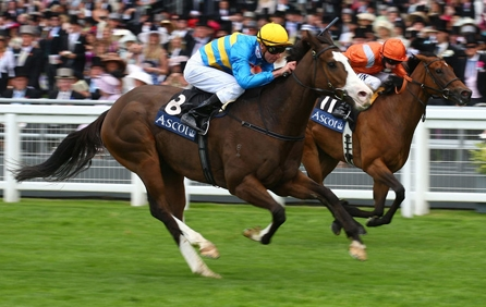 Buy Royal Ascot Horse Racing Tickets